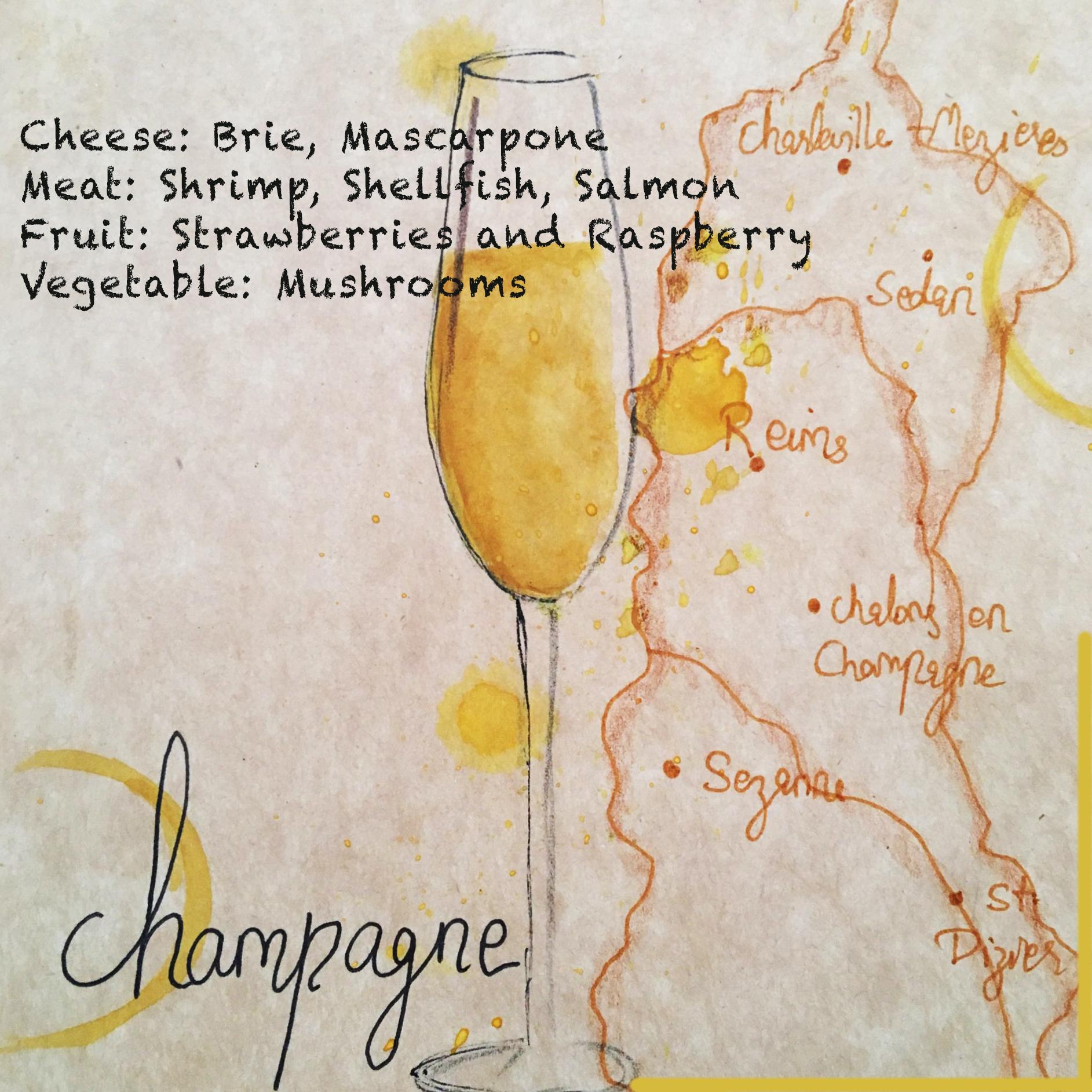 Wines Of The World Cheat Sheet Surabhi Mehta